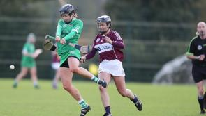 SLIDESHOW: Limerick's All-Ireland camogie championship clash with Westmeath
