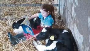 Limerick farmer demands a 'full apology' from Peta UK over video